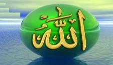التوحيد في كلام الإمام علي (ع)