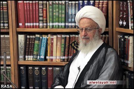 آية الله مكارم الشيرازي يشيد بنداء قائد الثورة الإسلامية