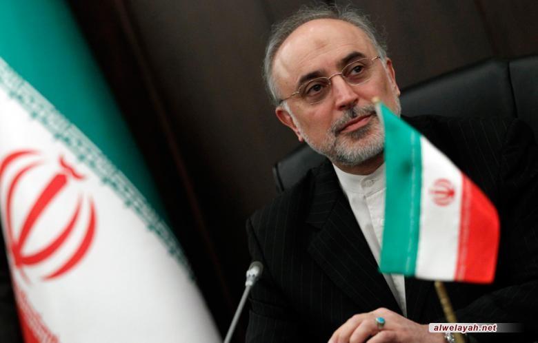صالحي: نداء الثورة الإسلامية هو نداء الكرامة والإنسانية