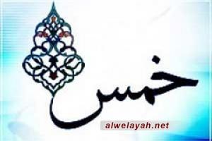 «دروس في الحكومة الإسلامية»؛ الدرس الخامس والأربعون: هل مالكية النصف عامة